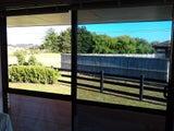 Window Tinting XPERTS!!!