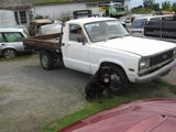 1984 For Courier Ute Excelent Flat Deck Reg on Hol
