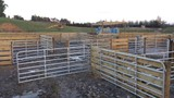 Custom Built Farm/Stock Gates
