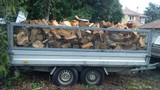 Firewood delivered 6m3 gum