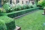 Landscaping, Paving, Gardens, Retaining Walls