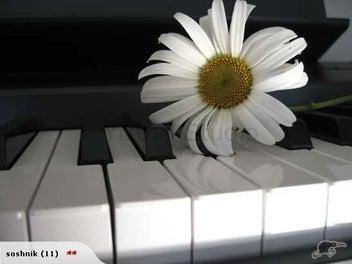 "Photograph ""Piano"""