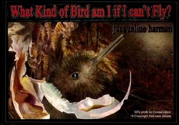 What Kind of Bird am I If I Can't Fly?