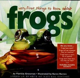 Very First Things to Know About Frogs