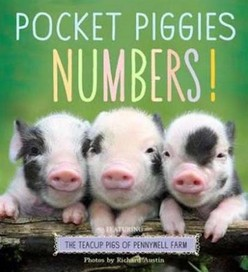 Pocket Piggies Numbers!: Featuring the Teacup Pigs
