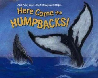 Here Come the Humpbacks
