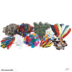 Craft Feathers Assorted Styles & Colours Classroom
