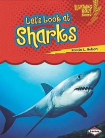 Let's Look at Sharks