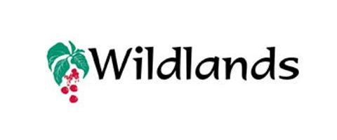 SENIOR CONSULTANT WETLAND ECOLOGIST Wildlands