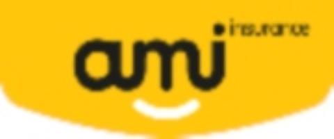 Personal Insurance Consultant - AMI