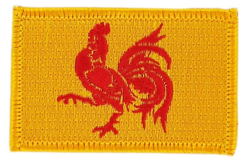 FLAG patch backpack national iron on glue embroidered applique wallonia  belgium