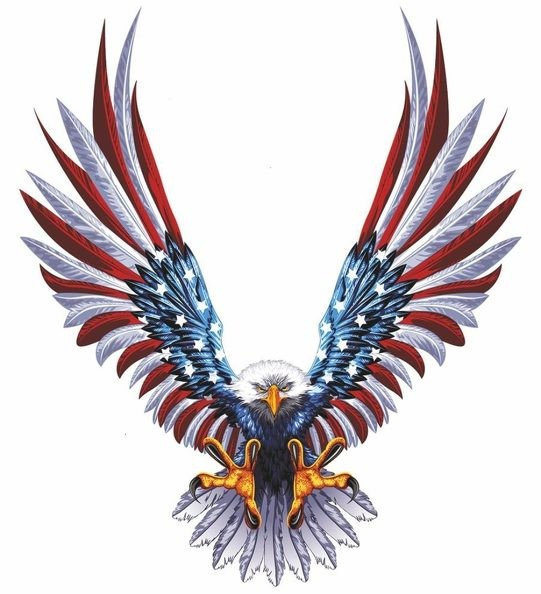 Sticker decal car bike bumper usa eagle tuning united states