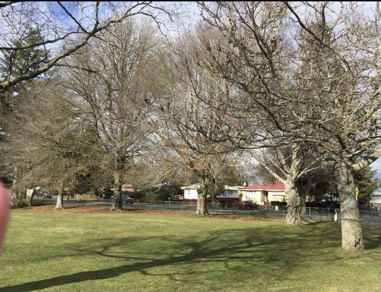 Development Site Genuinely for Sale – TOKOROA