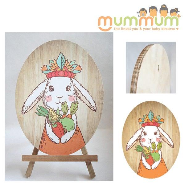 Crystal Ashley Nz Made Ply Wood Wall Art Tribal Bunny Princess