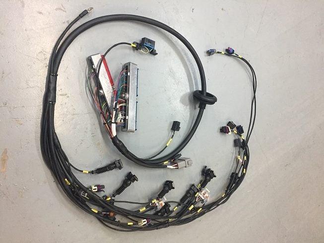 nd new motorsport spec LS1 engine loom | Trade Me Haltech Wiring Schematic Ls on