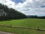 10 acres of grazing in Halswell