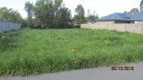 Specialist Grass Control