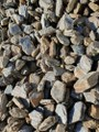 20-40mm Crawford Hill schist on special now