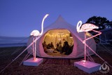 Glamping Consultation and Tent Manufacture