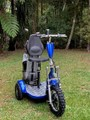 Triad Electric Scooters
