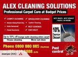 #1 Carpet Cleaner Auckland - Alex Carpet Cleaning