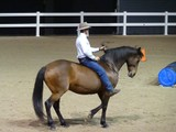 Senior Parelli Instructor & Horse Developer