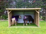 Horse and Pony Shelters - Steve's Shelters
