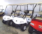 New Golf Cart and New Trailer deal