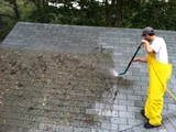 have moss roof or rust roof ? %10 off in Nov only