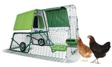 Keep Chickens? Keep Rabbits? Talk to Us!