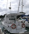 Auckland Fishing Charters $900 Labour Weekend