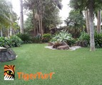 Synthetic Turf Artificial Grass Lawns Fake Grass