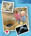 EcoWorld Aquarium & Wildlife Rehabilitation Centre