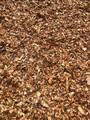 Aged Arborist Mulch