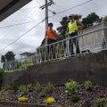 Gardening & Property Maintenance