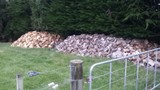 Firewood and splitting service