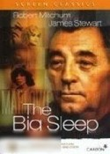 Big Sleep, The