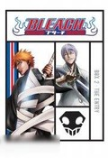 Bleach: The Complete Season Two
