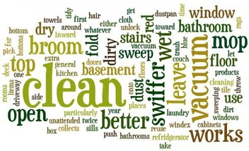 Home Cleaning for Professional's