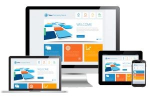 Website Design $300