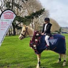 Horse Riding Lessons, Pony Club + more