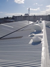 Auckland Commercial Roof Painting