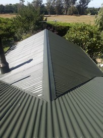 Roof painting & maintenance