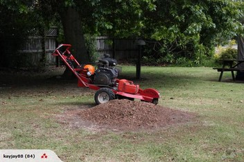 Stump grinding, Tree removal and pruning