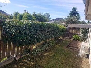 Lawn mowing / Garden tidyups / Outdoor work