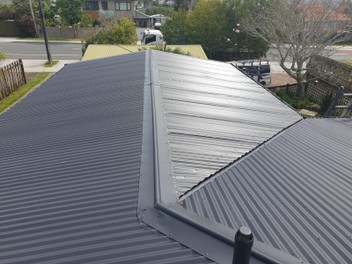 Your Roof Painting & Restoration Specialist