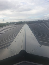 Auckland Roof Repairer