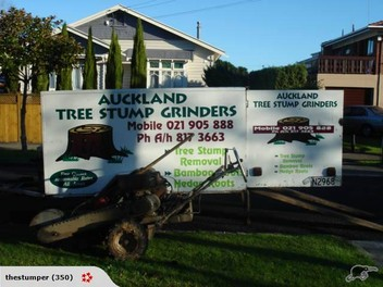 Tree Stump Grinding Auckland