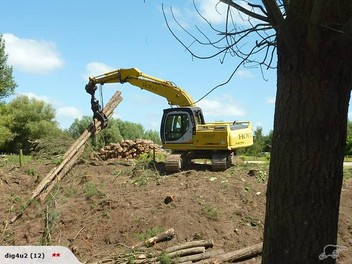 Tree removal/Land clearing/Earthworks