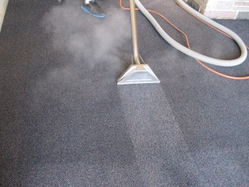 Carpet and Upholstery Steam cleaning Specialist